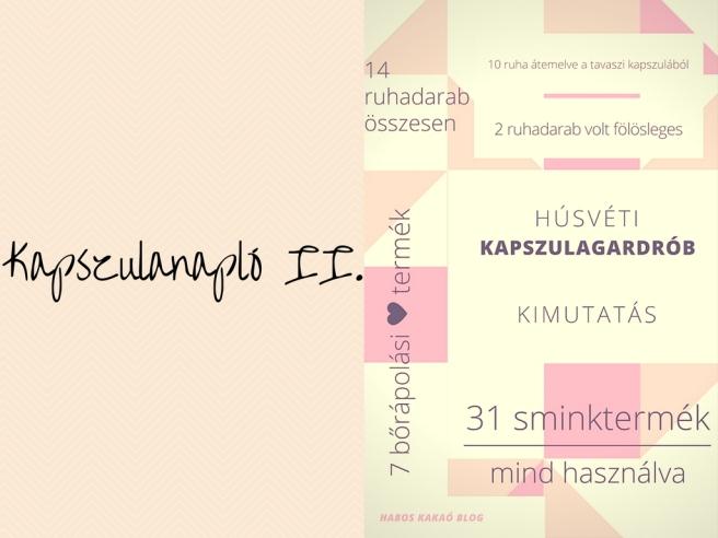 Kapszulanapló II.