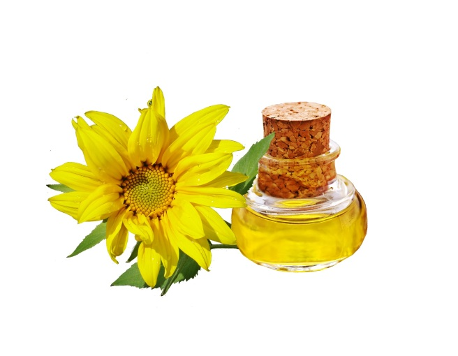 sunflower-744232
