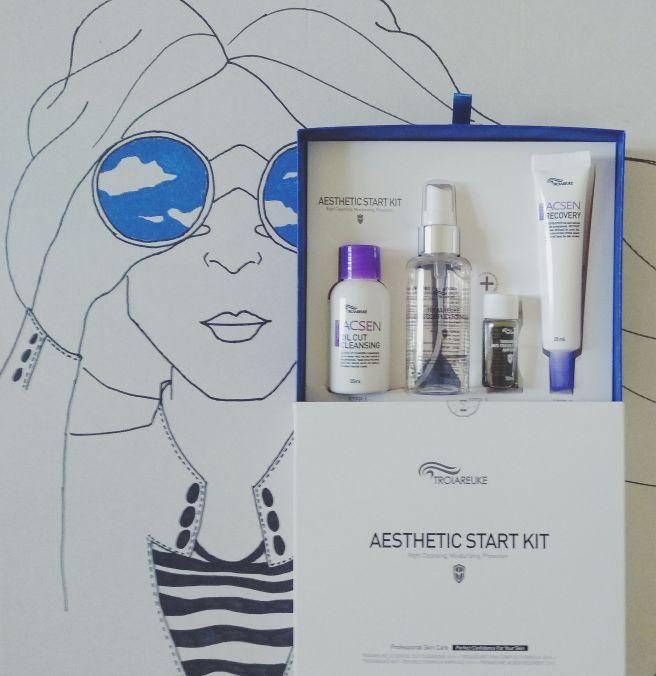 troiareuke aesthetic starter kit