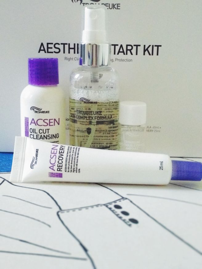 troiareuke aesthetic starter kit5